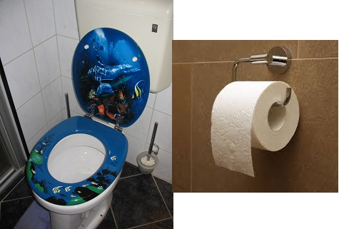 toilet and paper