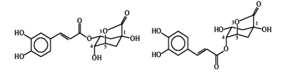 chlorogenic-acid-lactones